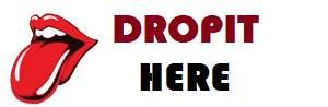 DROPIT-HERE Logo